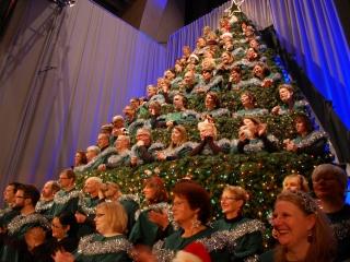 2012_12_09_TREE_13_g