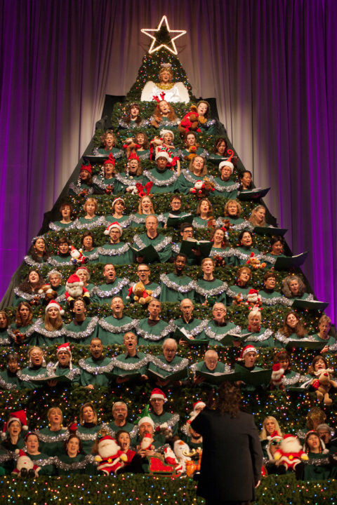 Singing Christmas Tree 2019.The Singing Christmas Tree German American Community Choir